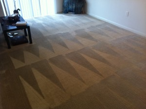 Carpet Cleaning Finished Product (After)