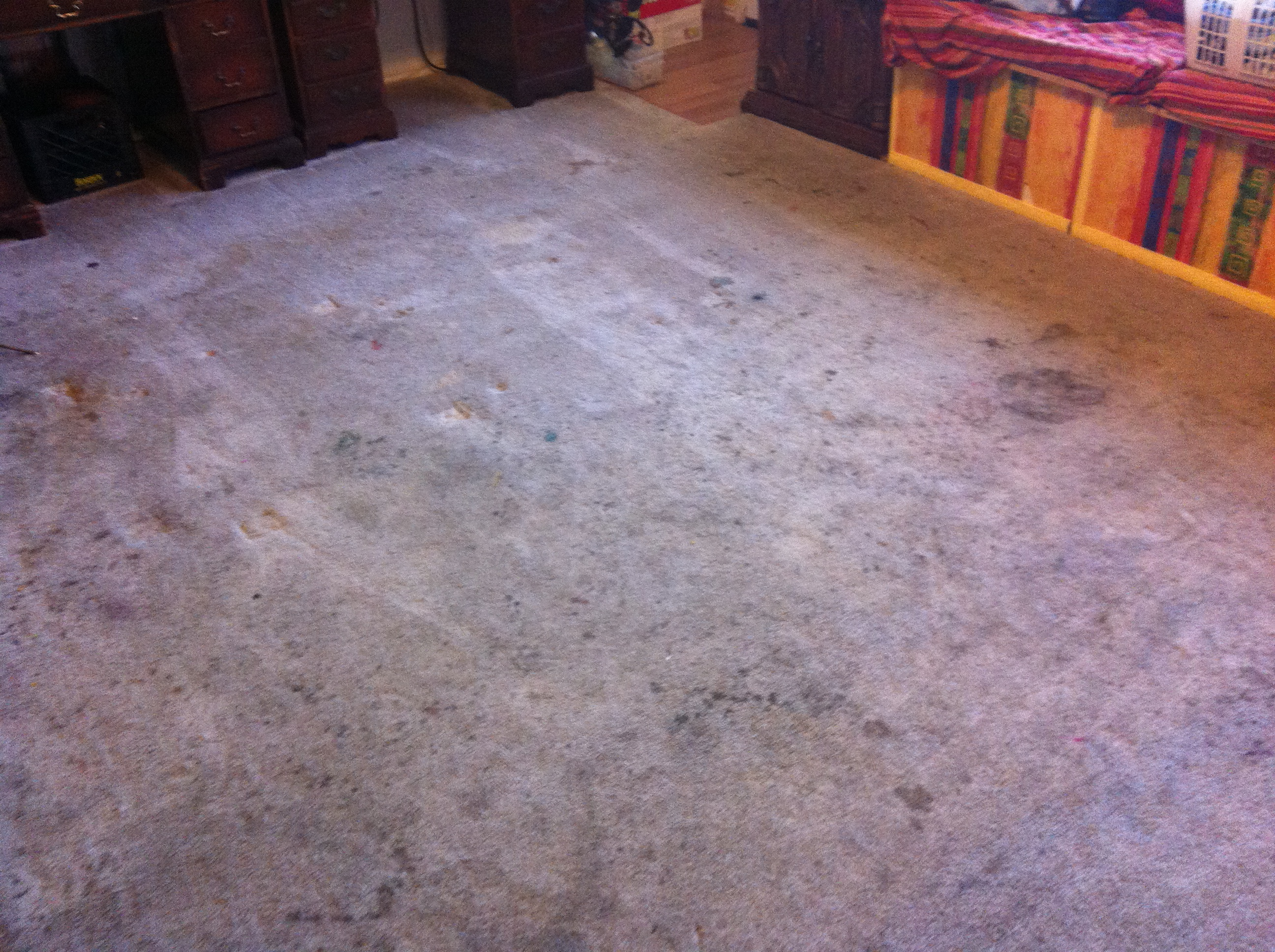 Heavily Stained Carpet Before