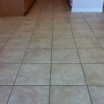 Tile & Grout (Before)