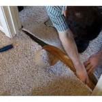 Carpet Seaming