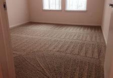 High-Rise Loft Carpet Cleaning