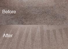 Carpet Cleaning Job In Allen