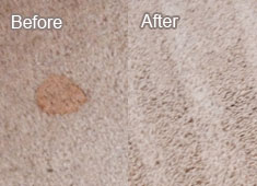 Carpet Cleaning Services In Richardson Texas