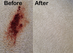 Carpet Cleaning Flower Mound, Texas