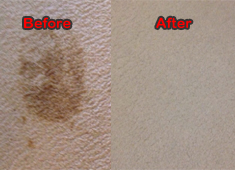 Carpet Cleaning Mansfield, Texas