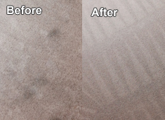 Carpet Cleaning DFW-Metreoplex, Texas