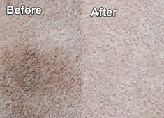 Carpet Cleaning Southlake, Texas