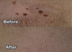 Carpet Cleaning Framer Branch, Texas